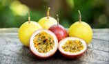Amazing Health Benefits of Passion Fruit