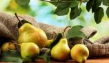 Amazing Health Benefits of Pear