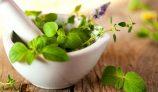 Unani Growing as a Popular Alternative Medicine